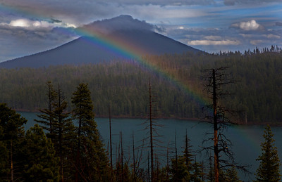 Rainbow Suttle Lake Cascade Range Oregon_9885