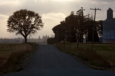 lone tree grain elevator road_1431