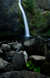 horsetail falls or_1091