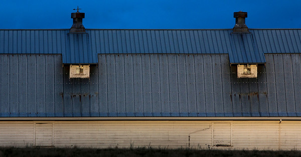 Barn early evening_1469 1