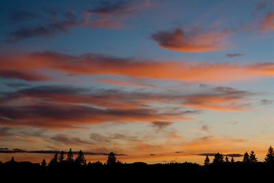 Sunset Painting_2128