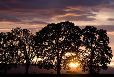 sunset_6070
