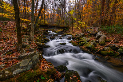 Flowing Autumn Stream In Great Smoky Mountains National Park