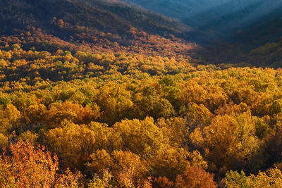 Autumn Colors In The Great Smoky Mountains
