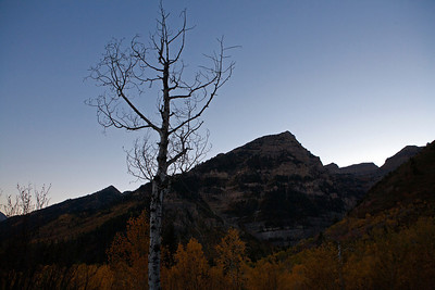 Tree American Fork Canyon (Hwy  92) through Uinta National Forest to Provo Canyon_0053