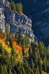 Provo Canyon UT_1072