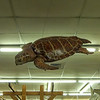 CoastalArtCenter-stores-12