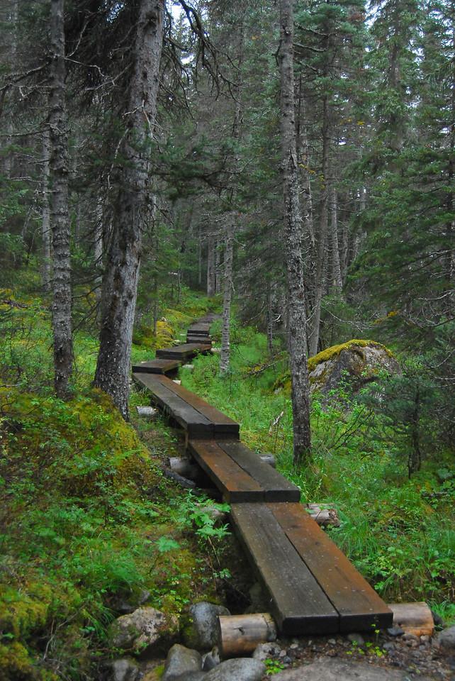Trail to Laughton Glacier