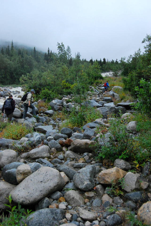 We pick our way up the trail along side the stream flowing from Laughton Glacier