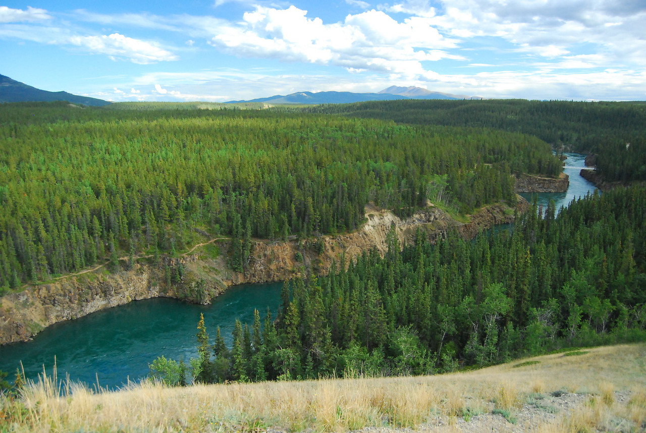 Miles Canyon upstream of Whitehorse on the Yukon River. Scene of many accidents as the gold miners floated to Dawson on their flimsy boats.