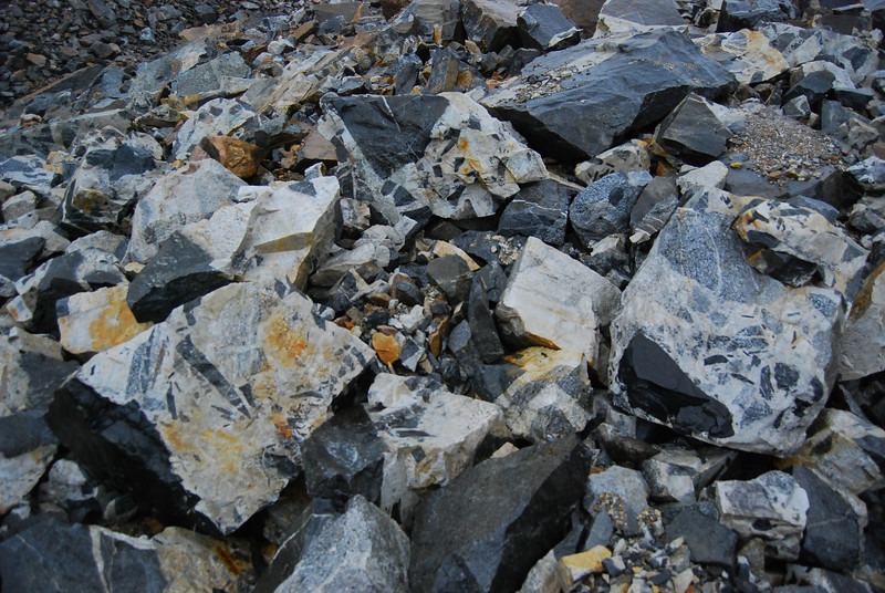 Very unusual rocks broken up on the surface of the Laughton Glacier