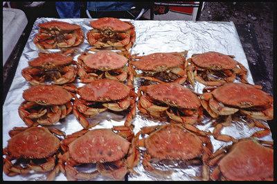 """Crabs..yummy"" Homer, Alaska Slide Film"