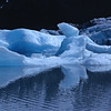 Portage Glacier<br /> Alaska