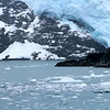 Aialik Glacier - Kenai Fjords National Park