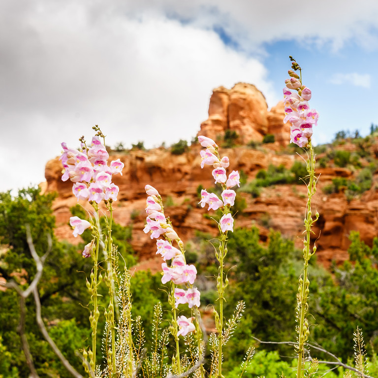 Sedona, Arizona, United States