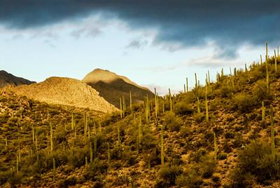 Arizona Scenics-3
