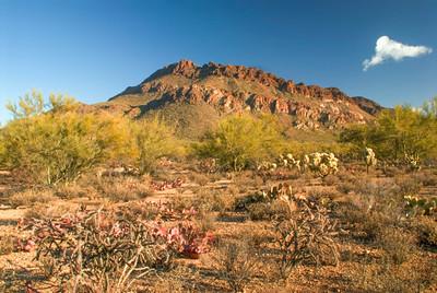 Arizona Scenics-1