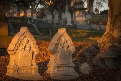 Mount Auburn cemetery, Cambridge