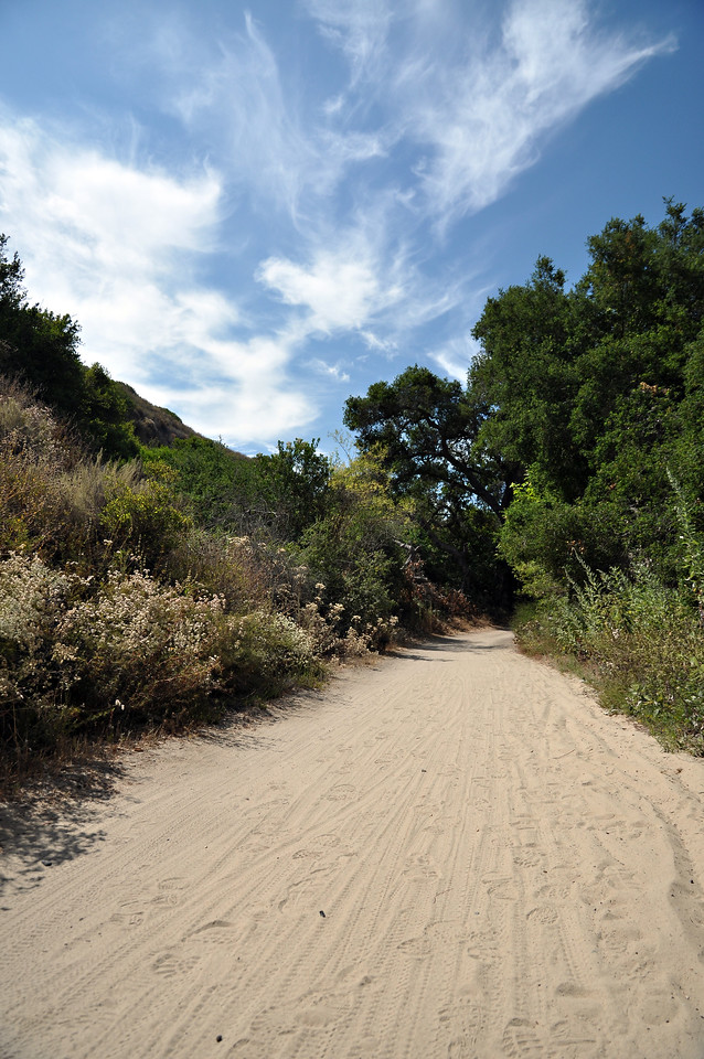 Aliso and Wood Canyons Wilderness Park, Orange County, California, United States