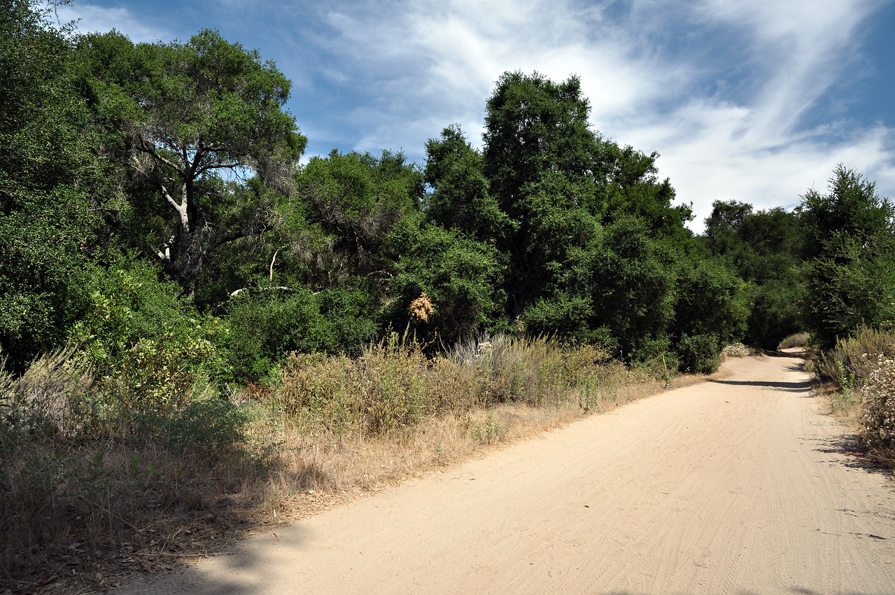 Aliso and Wood Canyons Park