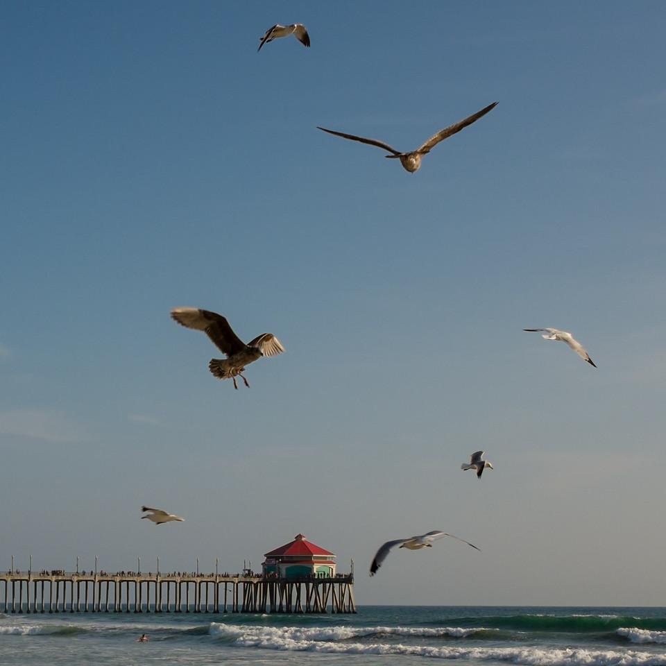 Huntington Beach, Orange County, California, United States