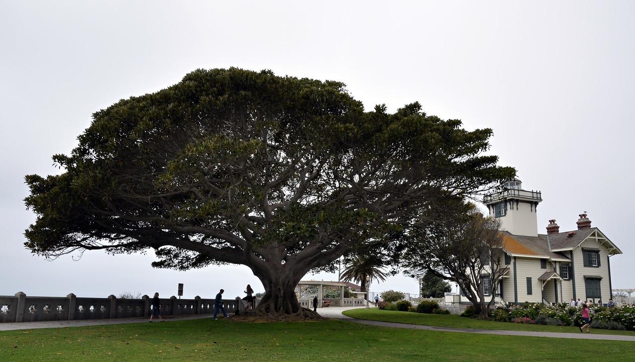 San Pedro, California, United States