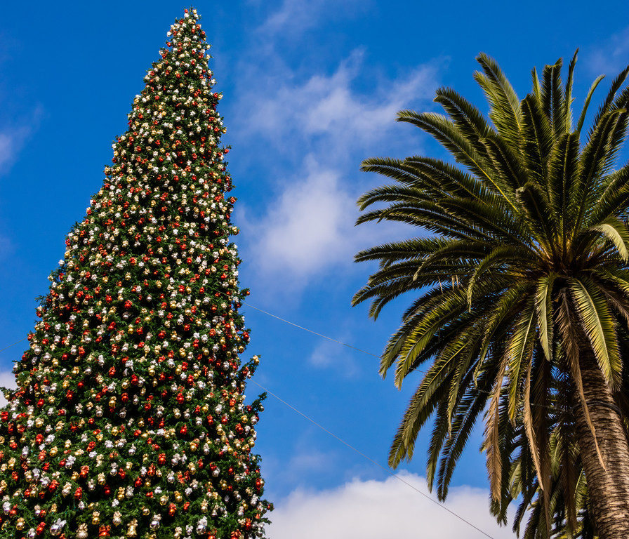 Fashion Island, Newport Beach, Orange County, California, United States