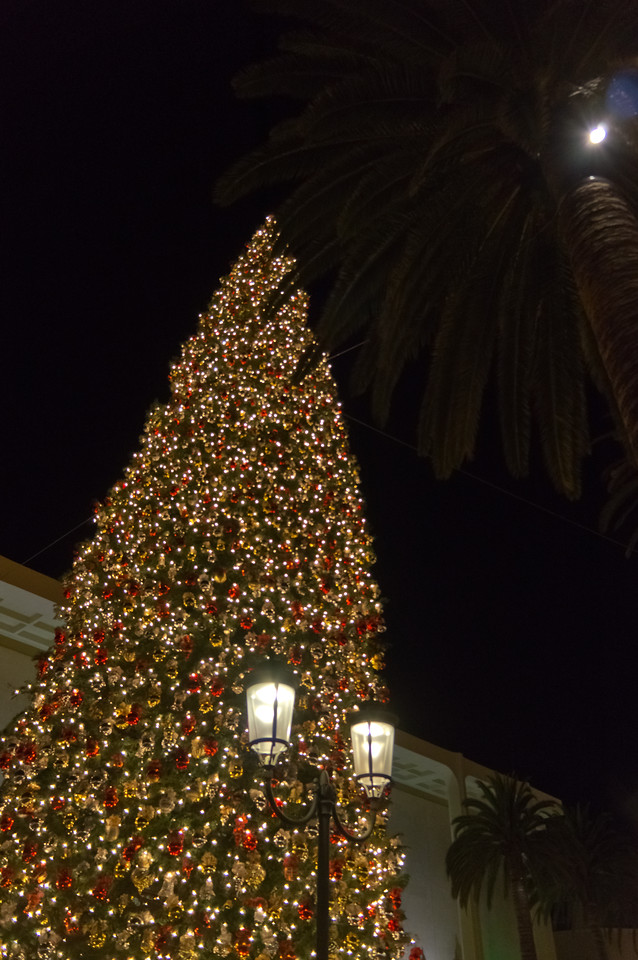 Fashion Island, Newport Beach, California, United States