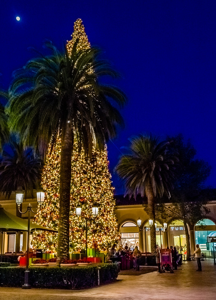 Fashion Island, Newport Beach, Orange County, California, United States