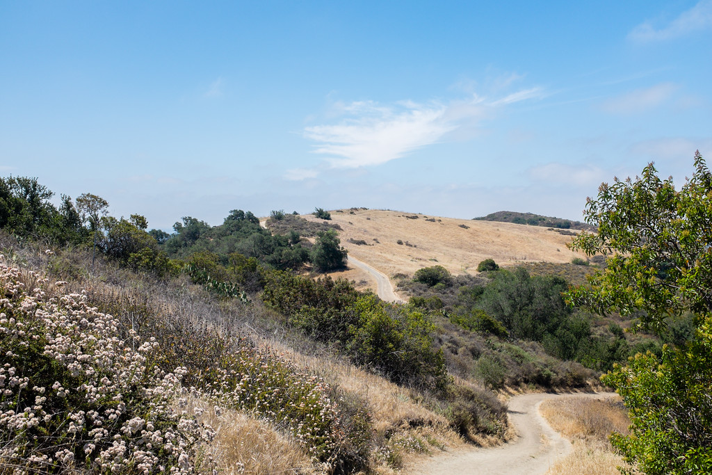 O'Neil Park, Orange County, California, United States