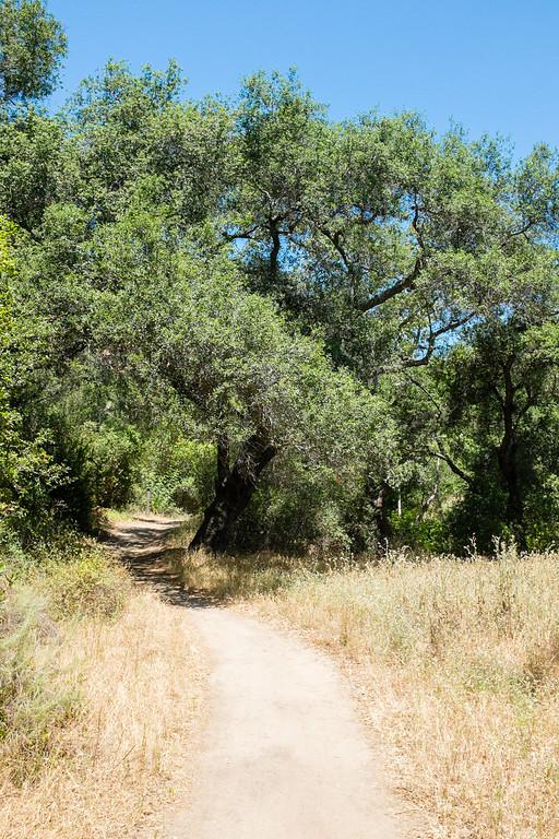 O'Neil Park, Orange County, California, United States