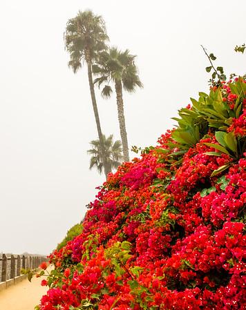 San Clemente 2013-09-14-4