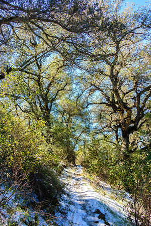 Ortega Highway, Riverside County, California, United States