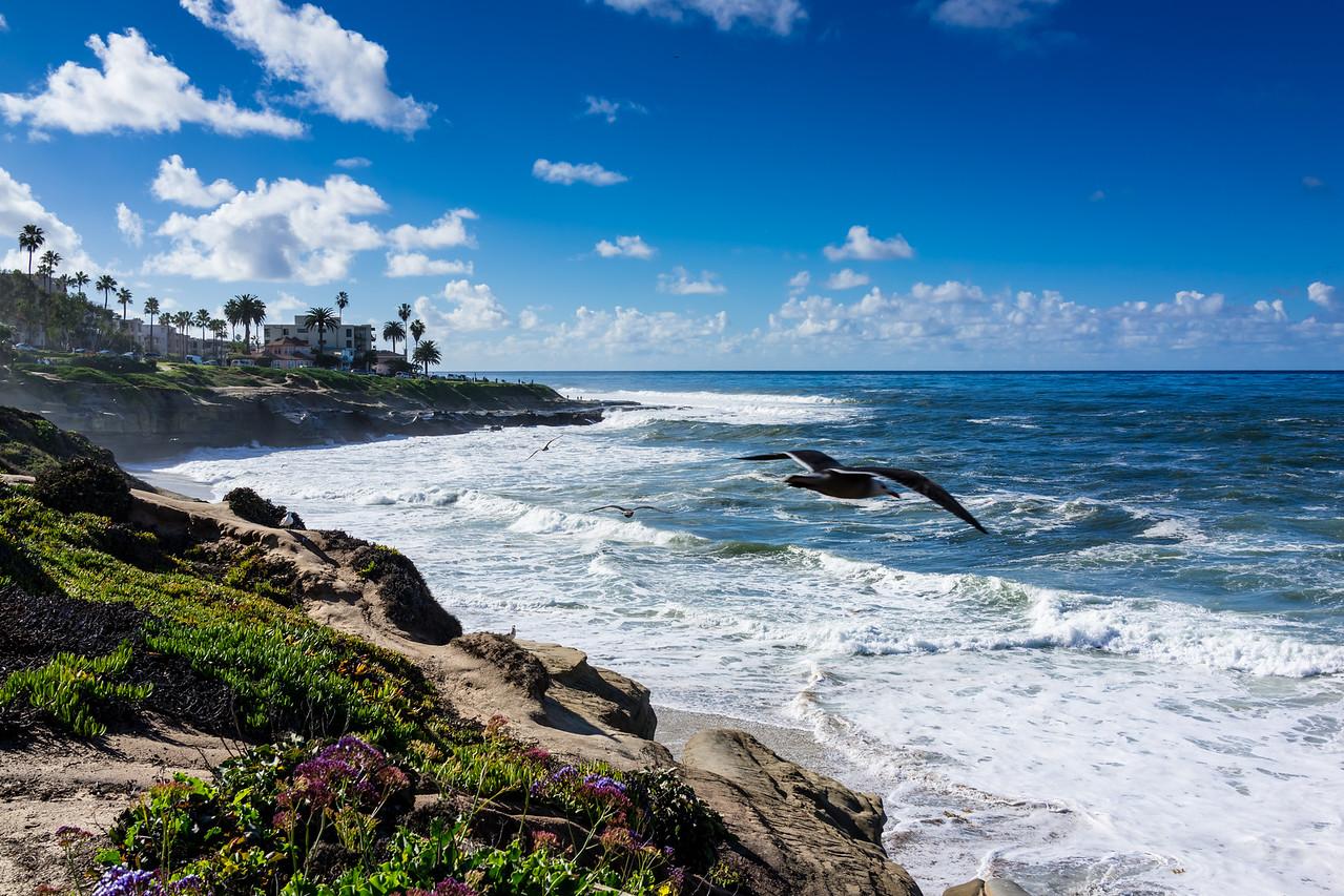 La Jolla, San Diego County, California, United States