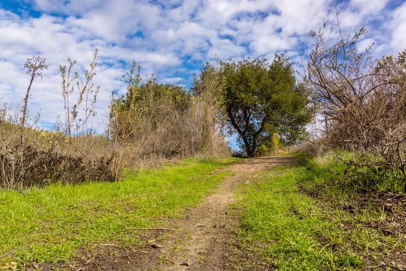 Thomas Riley Wilderness Park, Orange County, California, United States