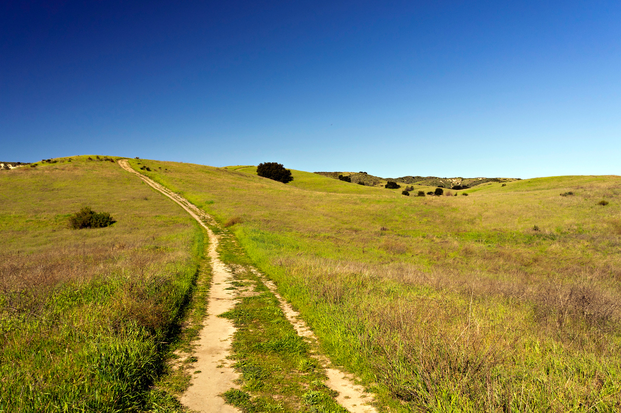Thomas Riley Wilderness Park, Orange County, California, United States