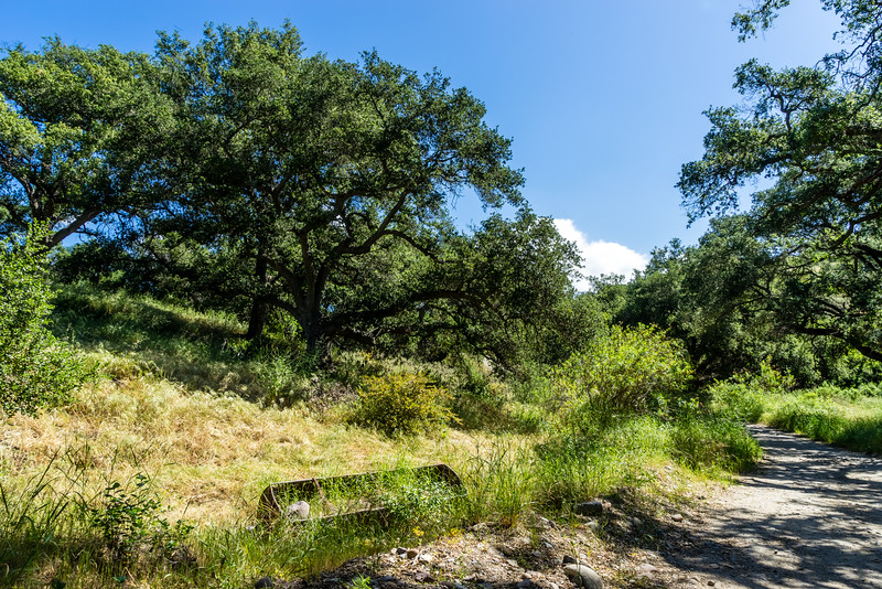 Whiting Ranch Wilderness Park, Orange County, California, United States