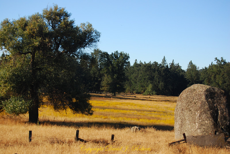 Meadow, rocks and trees, Meadow Creek Ranch, Mariposa, California