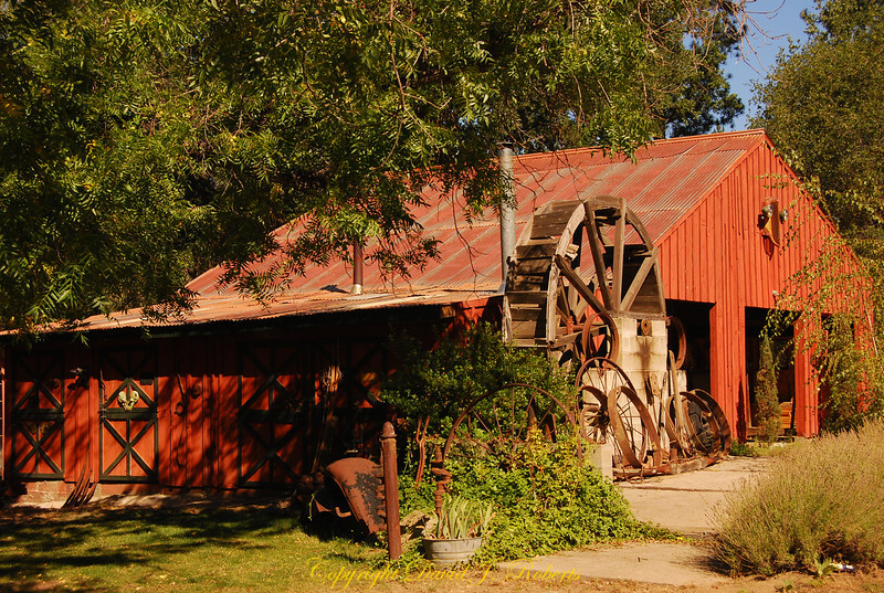 Barn, Meadow Creek Ranch, Mariposa, California