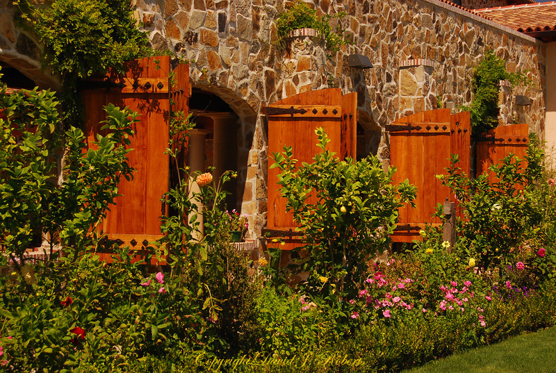 Jacuzzi Vineyard garden, Sonoma California