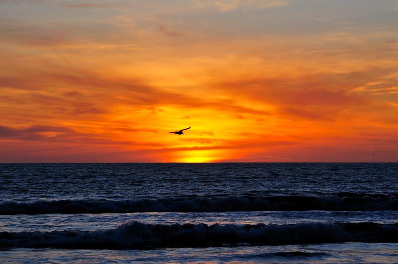 Sunset, Venice Beach
