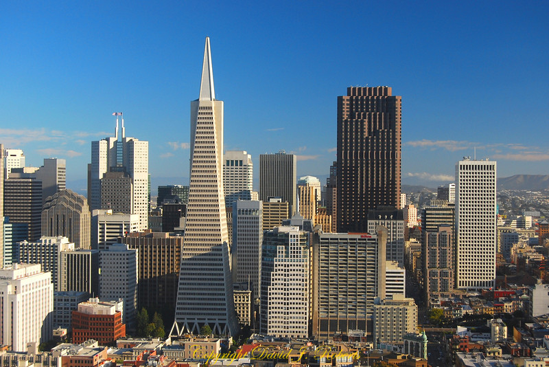 Skyline view with Transamerica building, San Fransisco, California