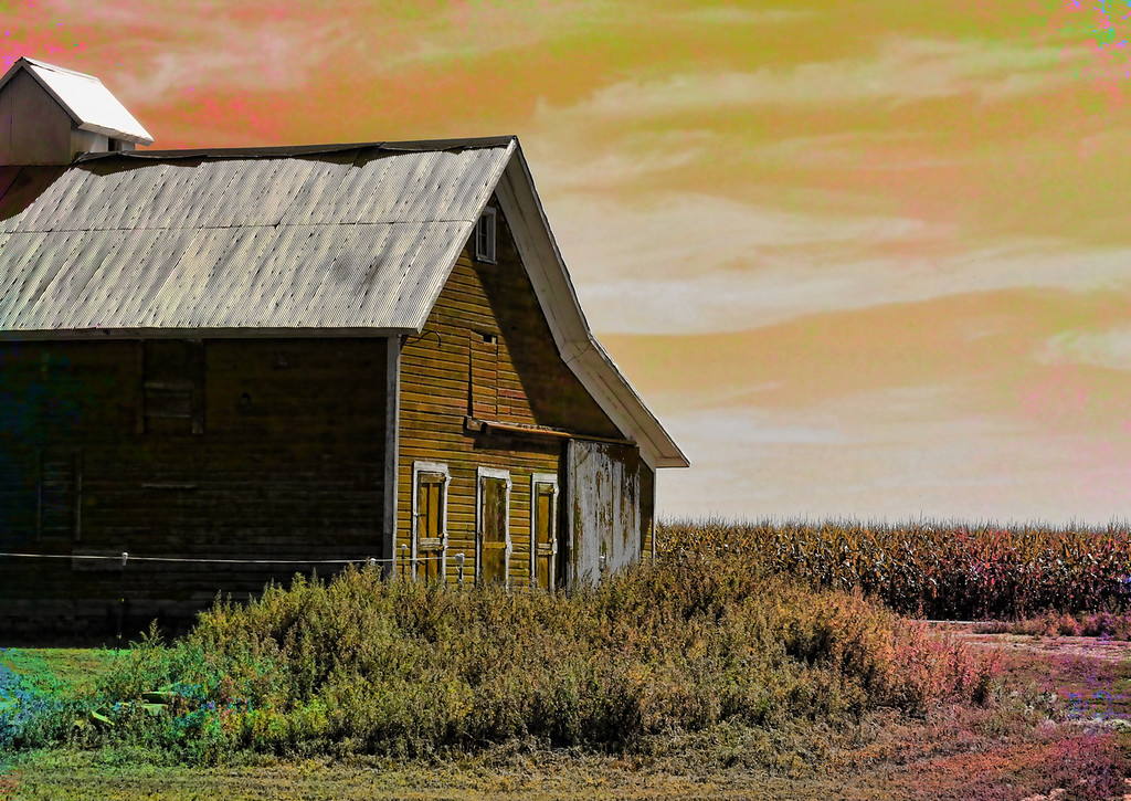 Barn w Corn textured hue