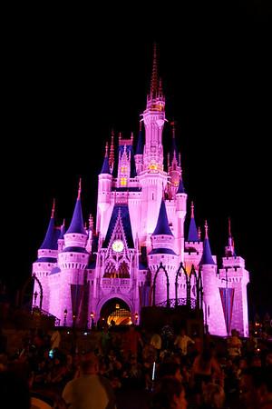 Florida- Disney World