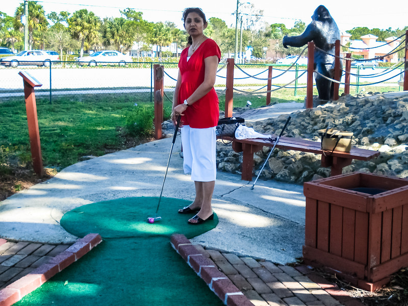 Golf Safari Mini Golf
