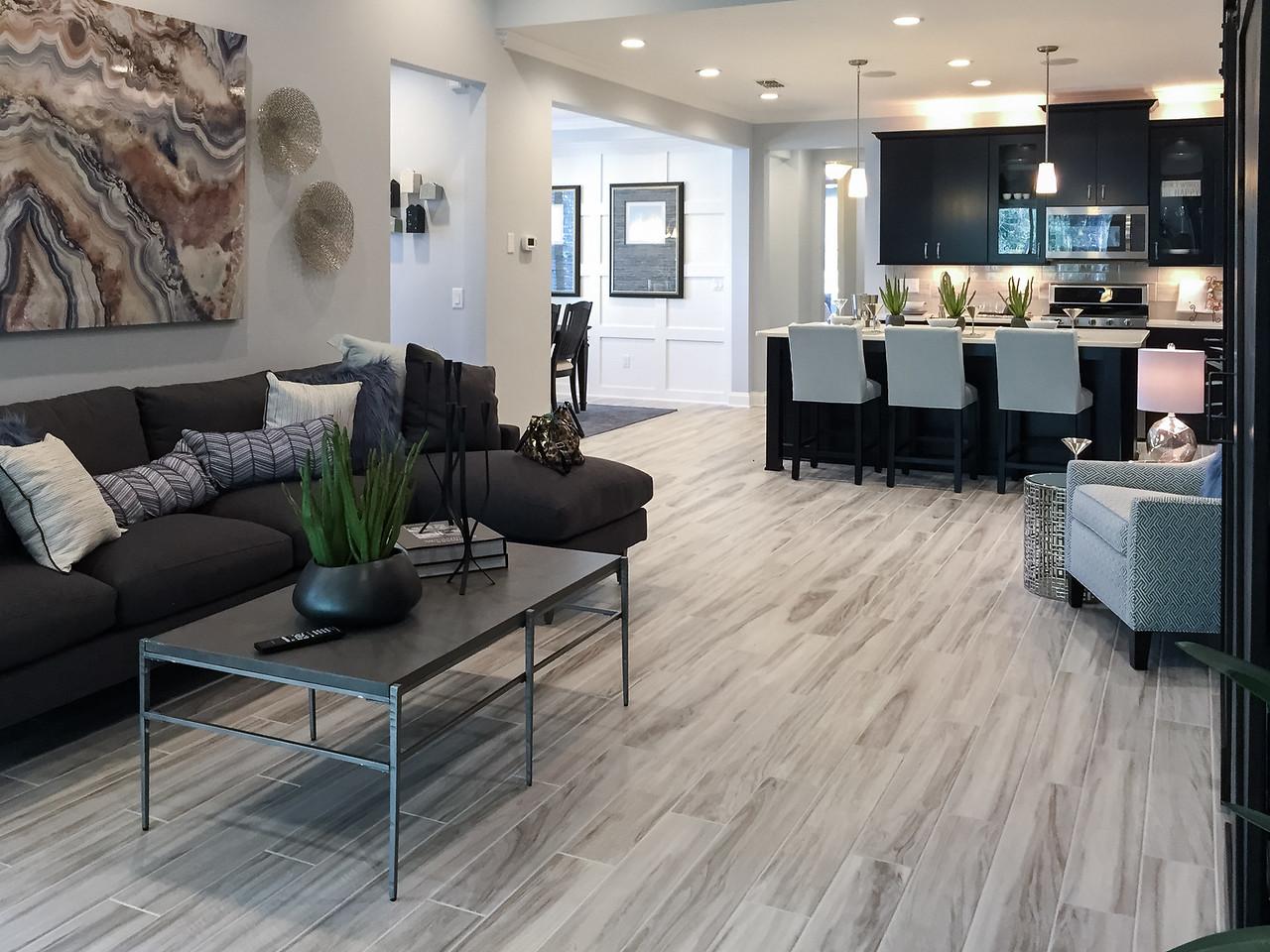 Egret Model Family Room and Kitchen