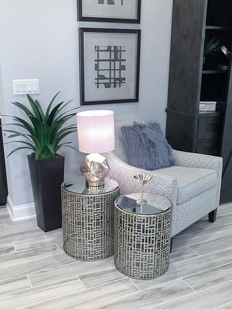 Egret Model Family Room