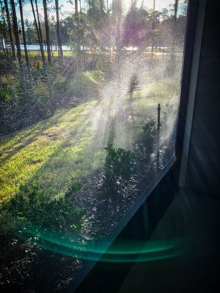 Sprinklers in the Morning