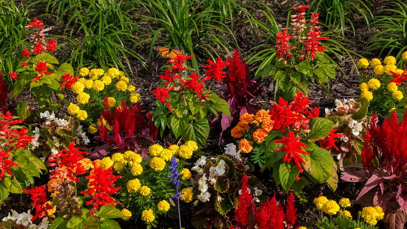 RiverClub Floral Display