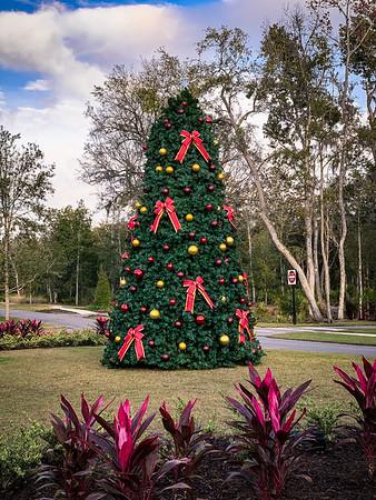 Christmas Tree at the RiverClub